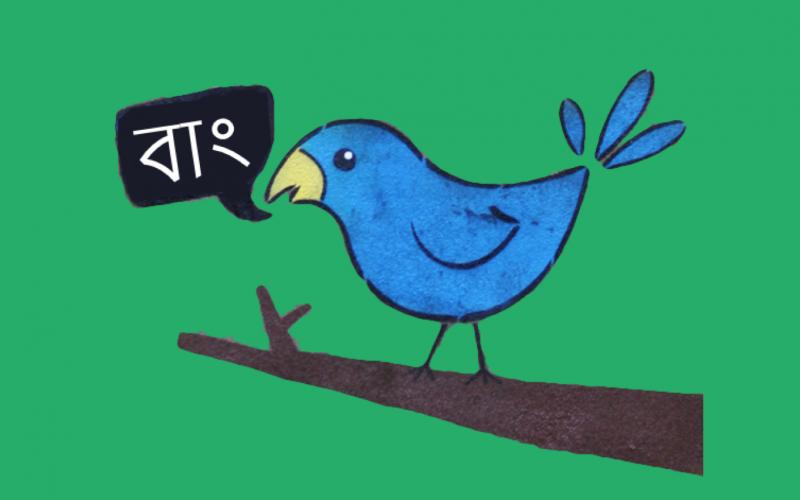 Tweeting Bird Image